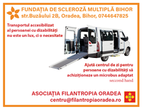 Microbus accesibilizat, un vis aproape de a fi împlinit
